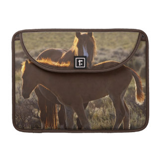 Feral Horse Equus caballus) adult and colt in MacBook Pro Sleeves