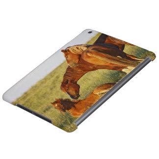 Feral Horse Equus caballus) adult smelling Case For iPad Air