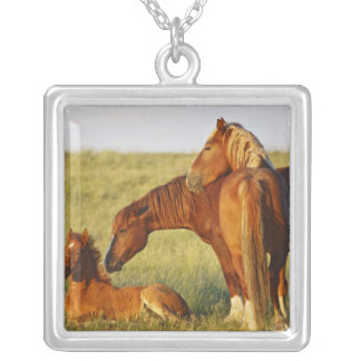 Feral Horse Equus caballus) adult smelling Silver Plated Necklace