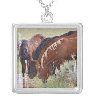 Feral Horse Equus caballus) herd drinking in Square Pendant Necklace