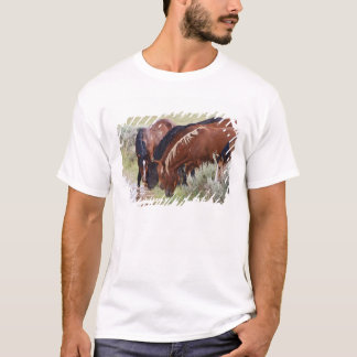Feral Horse Equus caballus) herd drinking in T-Shirt