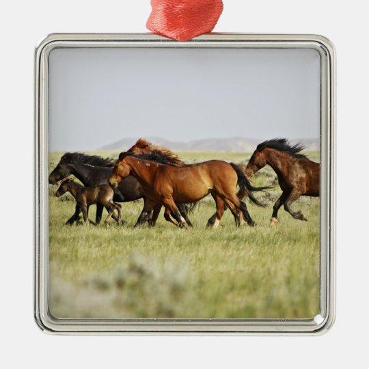 Feral Horse Equus caballus) herd of wild Metal Ornament