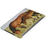 Feral Horse Equus caballus) wild horse mother Case For iPad Air