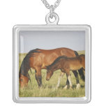 Feral Horse Equus caballus) wild horse mother Personalized Necklace