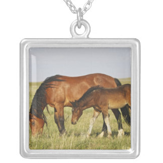 Feral Horse Equus caballus wild horse mother Personalized Necklace