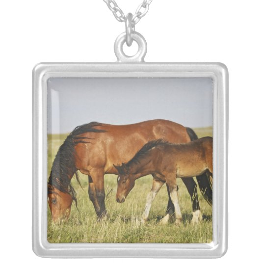 Feral Horse Equus caballus) wild horse mother Silver Plated Necklace