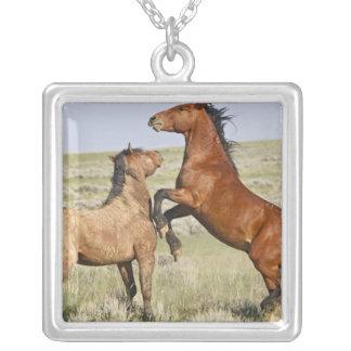 Feral Horse Equus caballus wild horses 2 Pendant