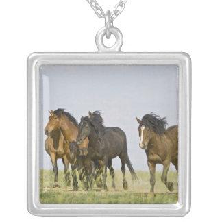 Feral Horse Equus caballus wild horses 3 Pendant