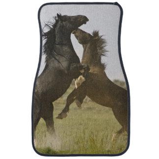 Feral Horse Equus caballus) wild horses Car Floor Mat