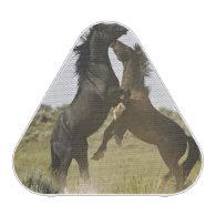 Feral Horse Equus caballus) wild horses Bluetooth Speaker