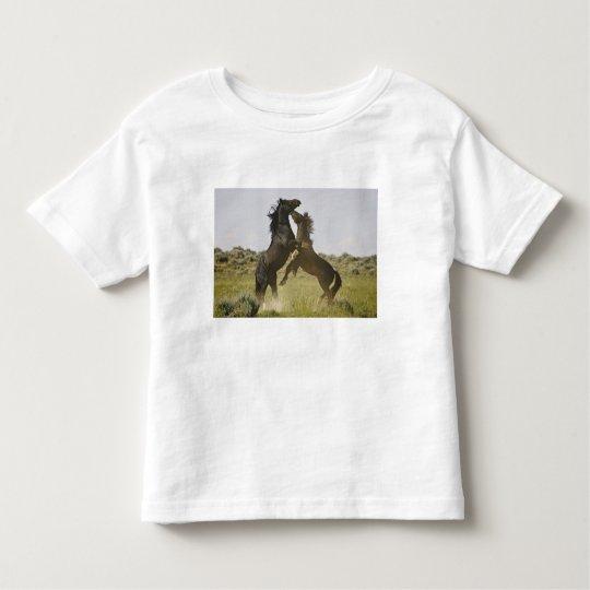 Feral Horse Equus caballus) wild horses Toddler T-shirt