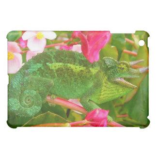 Feral Jackson's Chameleon on Maui Island Hawaii Case For The iPad Mini
