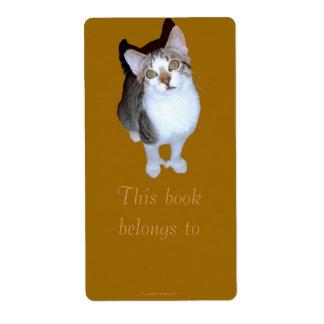 "Feral Kitten ""Hemming"" Bookplate Custom Shipping Label"