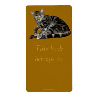 "Feral Kitten ""Miss Marble"" Bookplate"