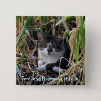 Feral Kitty Button