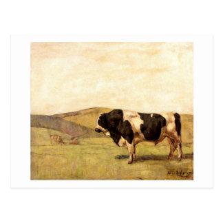Ferdinand Hodler - Bull en un pasto Postal