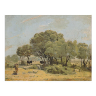 Ferdinand Hodler- Olive trees in Spain Postcard