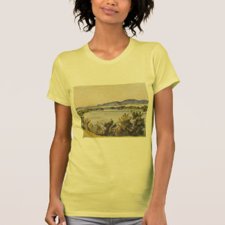 Ferdinand Hodler- The river Aare in Solothurn T Shirts