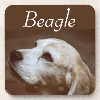 Fergie el beagle 2 posavaso