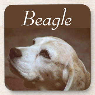 Fergie the Beagle 2 Beverage Coaster