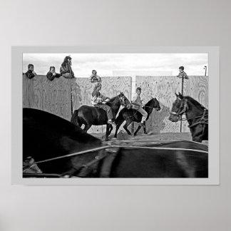 Feria de caballo, condado Galway, Irlanda Póster
