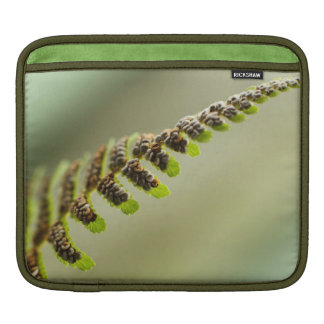 Fern and spores iPad sleeves