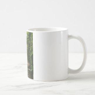 Fern Canyon Coffee Mug