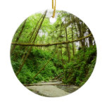 Fern Canyon I at Redwood National Park Ceramic Ornament