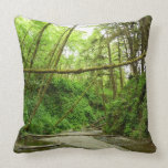 Fern Canyon I at Redwood National Park Throw Pillow