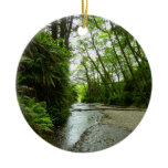 Fern Canyon II at Redwood National Park Ceramic Ornament