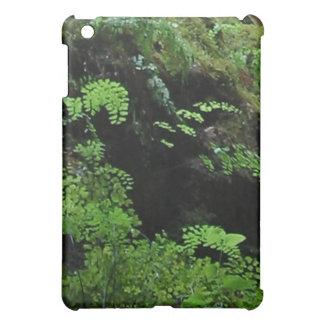 Fern Cave iPad Mini Cover