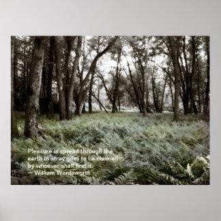 Fern Field in a Floodplain Forest: Quote Poster