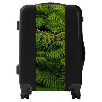 Fern Fine Art Photograph Luggage