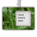 Fern Fronds I Green Nature Christmas Ornament