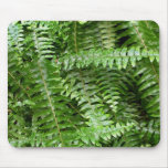 Fern Fronds I Green Nature Mouse Pad