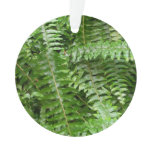 Fern Fronds I Green Nature Ornament
