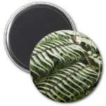 Fern Fronds II Dark Green Nature Magnet