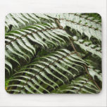 Fern Fronds II Dark Green Nature Mouse Pad