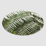 Fern Fronds II Dark Green Nature Oval Sticker