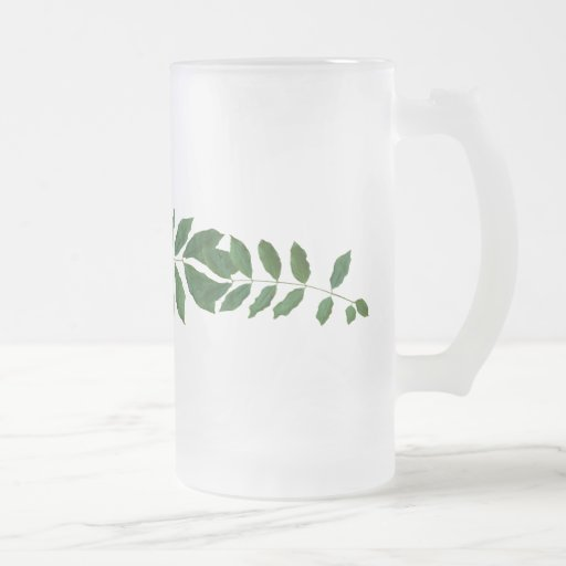 Fern Frosted Stein 16 Oz Frosted Glass Beer Mug