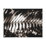 Fern Gallery Wrapped Canvas