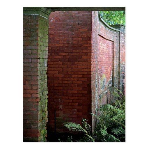 Fern Garden Postcard