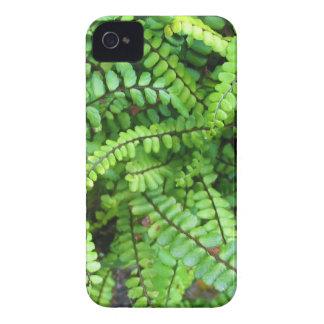 Fern Green iPhone 4 Case