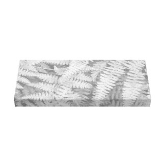 Fern in black and white on wrapped canvas. canvas print