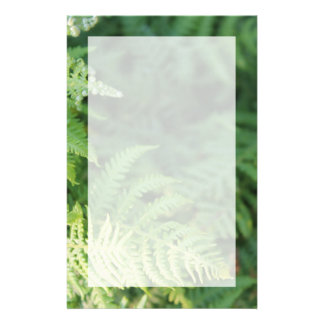 Fern Leaves. Customized Stationery