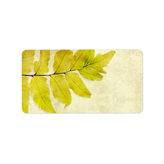 Fern leaves grunge design label
