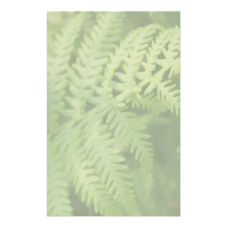 Fern Leaves, Light Green. Customized Stationery