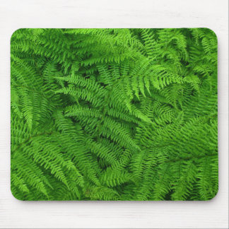fern leaves mouse pad