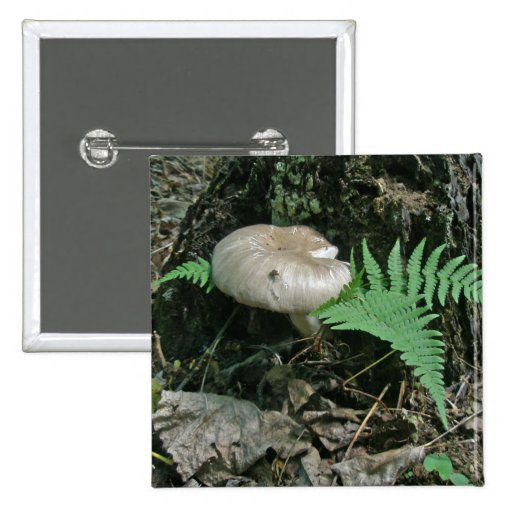 Fern & Mushroom at Stump Coordinating Items 2 Inch Square Button