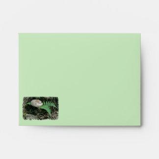 Fern & Mushroom at Stump Note Card Envelope